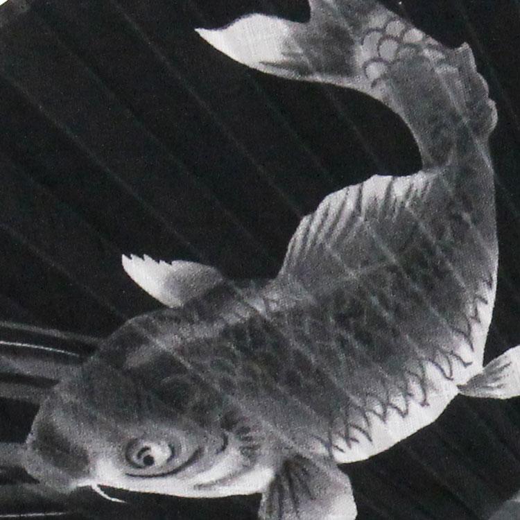 扇面アップ 鯉