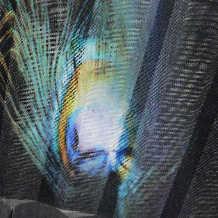 扇面は孔雀の羽根にスカルを あしらったデザインです。
