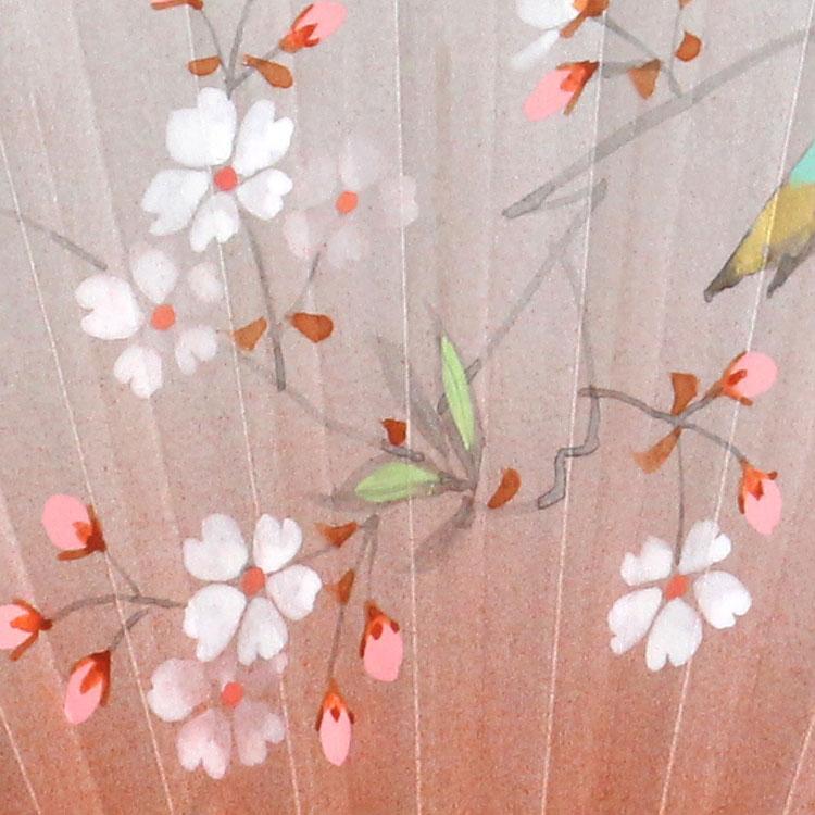 扇面アップ桜。