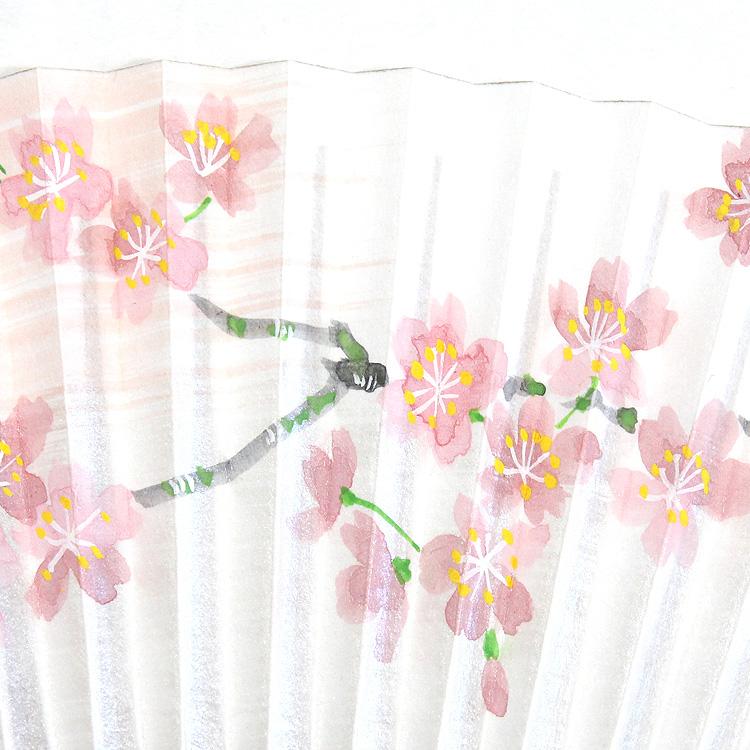 扇面アップ 桜