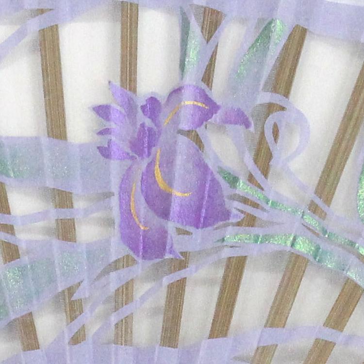 扇面アップ 杜若(かきつばた)・紫